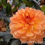 Заказать картину-Цветы15