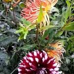 Картина на заказ-цветы