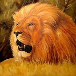 Картина маслом -Царь зверей,холст,масло,40х60,2007г.