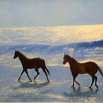 Картина маслом - Морская прогулка,холст,масло,70х100,2005г.