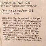 Сальвадор Дали (описание)