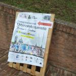 Фестиваль акварелистов,афиша