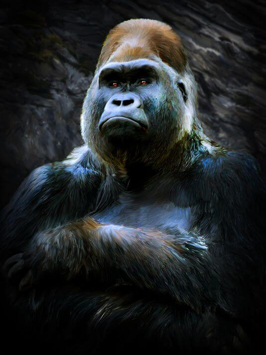 Harambe: Slain gorilla portrait by Deb Minnard