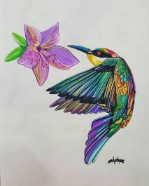 humming bird super markers