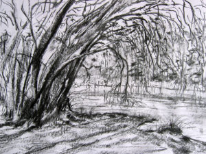 080706_tim-hardy-drawing