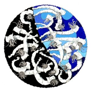 anne-adams-artwork-sealife