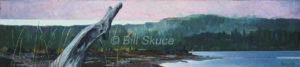 030111_bill-skuce