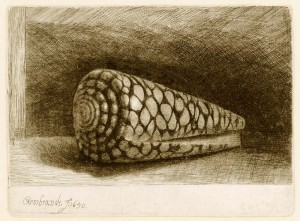 rembrandt_the-shell