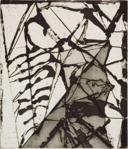 brice-marden_6-etchings-to-rexroth