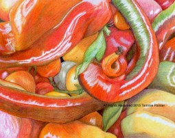 """""""Tomatoes & Peppers"""" 8x10"""" Colored Pencil on Bristol $75"""