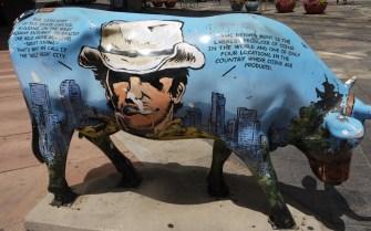 Ковбойский бык в США