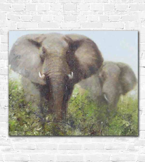 David Shepherd Elephants