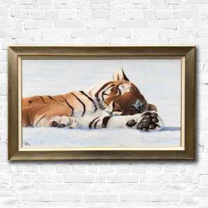 Tiger lying in the snow
