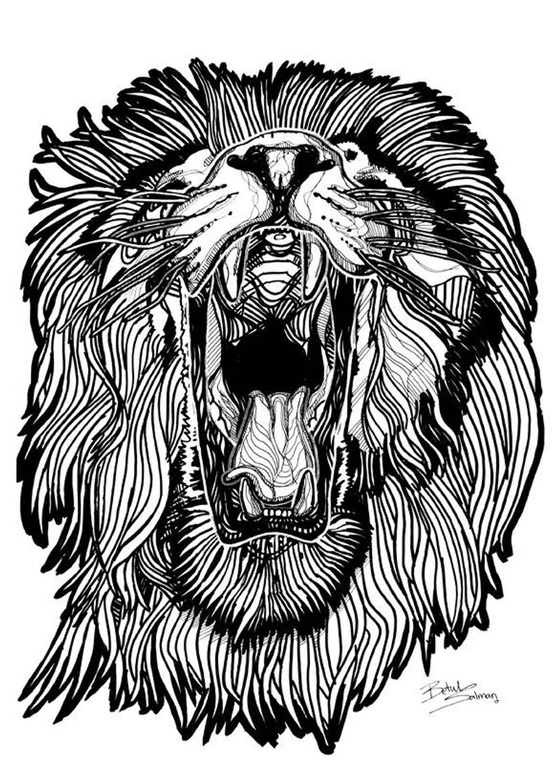 angry lion drawing at
