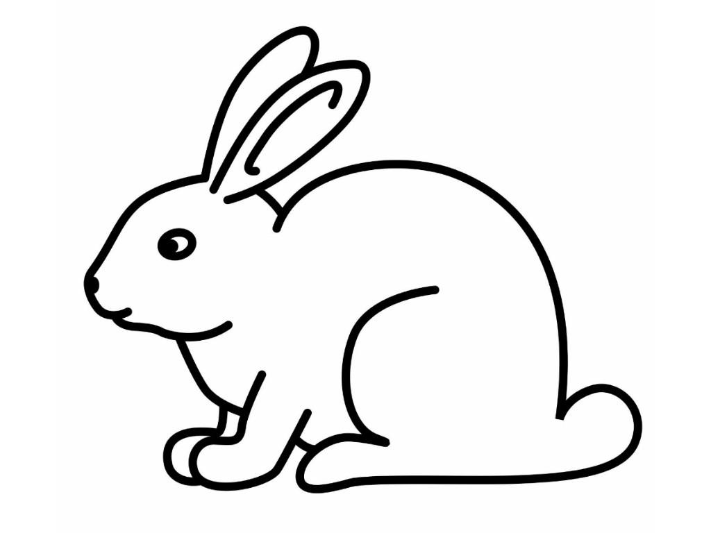 Bunny Cartoon Drawing At Paintingvalley