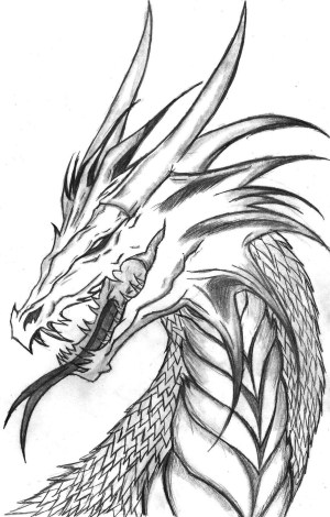 dragon pencil drawings drawing cool easy chinese dragons realistic sketches draw head sketch draak coloring cliparting tekeningen desenho ideias kunst