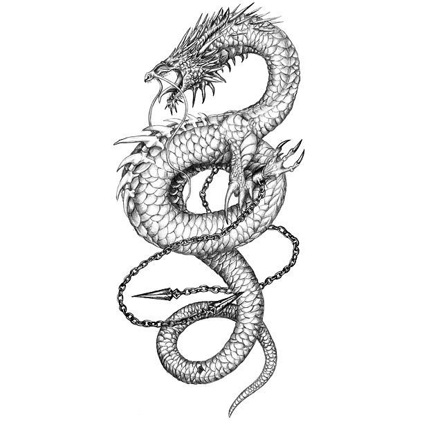 chinese dragon tattoo drawing