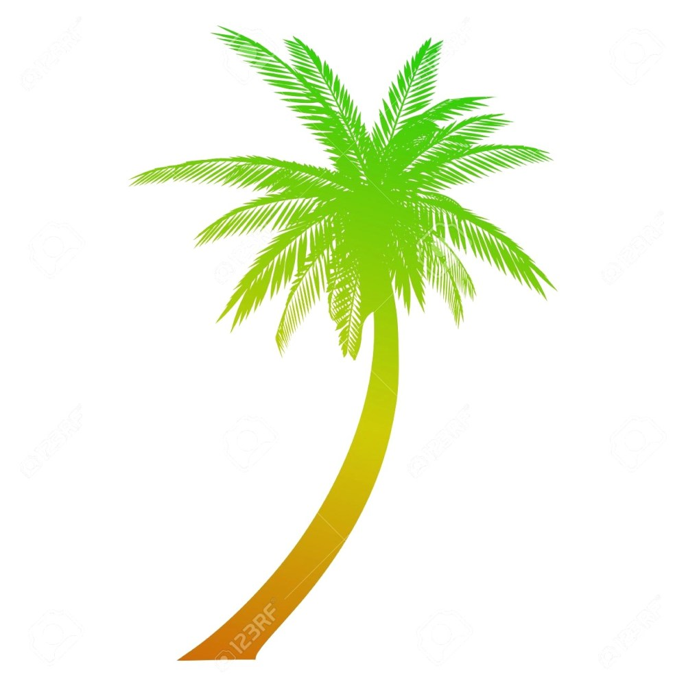 medium resolution of 1300x1300 palm tree vectors into anysearch co avec coconut tree vector coconut tree drawing