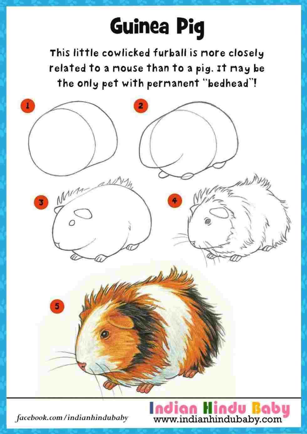 medium resolution of 980x1386 make a cute embroidery rhcom how to draw guinea pig art cute guinea pig