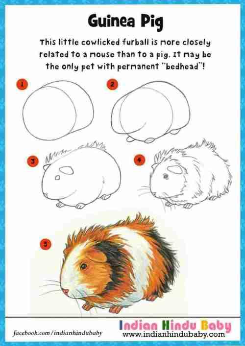 small resolution of 980x1386 make a cute embroidery rhcom how to draw guinea pig art cute guinea pig