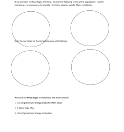 791x1024 meiosis drawing phase for free download cytokinesis drawing [ 791 x 1024 Pixel ]