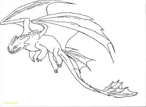 dragon easy drawing dragons toothless draw simple drawings hamano elite head deviantart getdrawings paintingvalley