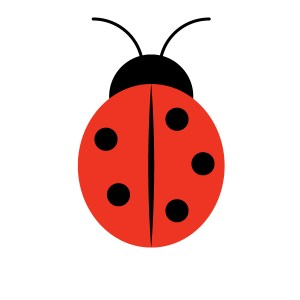 ladybug drawing easy miraculous shapes drawings step basic illustrator garden paintingvalley adobe