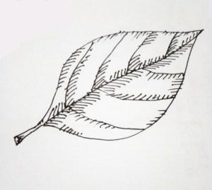 pen drawings easy ink paintingvalley eye illustration