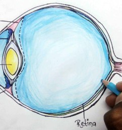 1280x720 how to structure of human eye step eye anatomy drawing [ 1280 x 720 Pixel ]