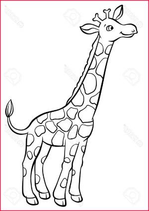 giraffe drawing drawings draw cartoon easy girraffe line very pencil paintingvalley arts