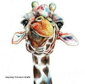 giraffe easy drawing funny drawings draw way paintingvalley getdrawings