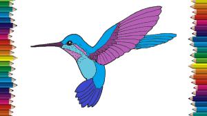 hummingbird drawing easy draw step bird drawings paintingvalley hummin