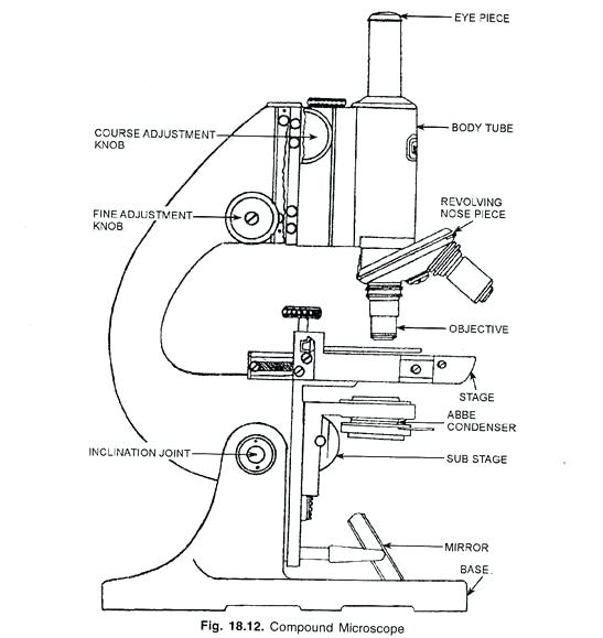 Labeled Microscope Diagram