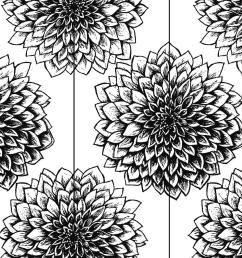 900x900 black and white mums drawing mum flower drawing [ 900 x 900 Pixel ]