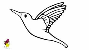 easy draw drawings hummingbird bird drawing nice simple humming paintingvalley