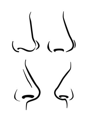 nose easy drawing vector step draw noses icon drawings illustration simple anime human expressive background paintingvalley doodle clipartmag dog beginners