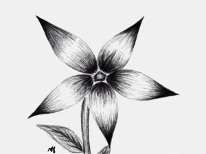 shading pencil easy flower flowers drawing shaded drawings paintingvalley bangladesh clipartmag