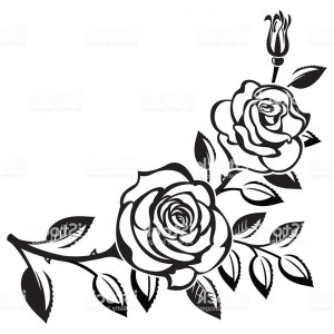 roses drawing rose simple flower floral background border flowers line drawings plant branch clipartmag paintingvalley sampaguita