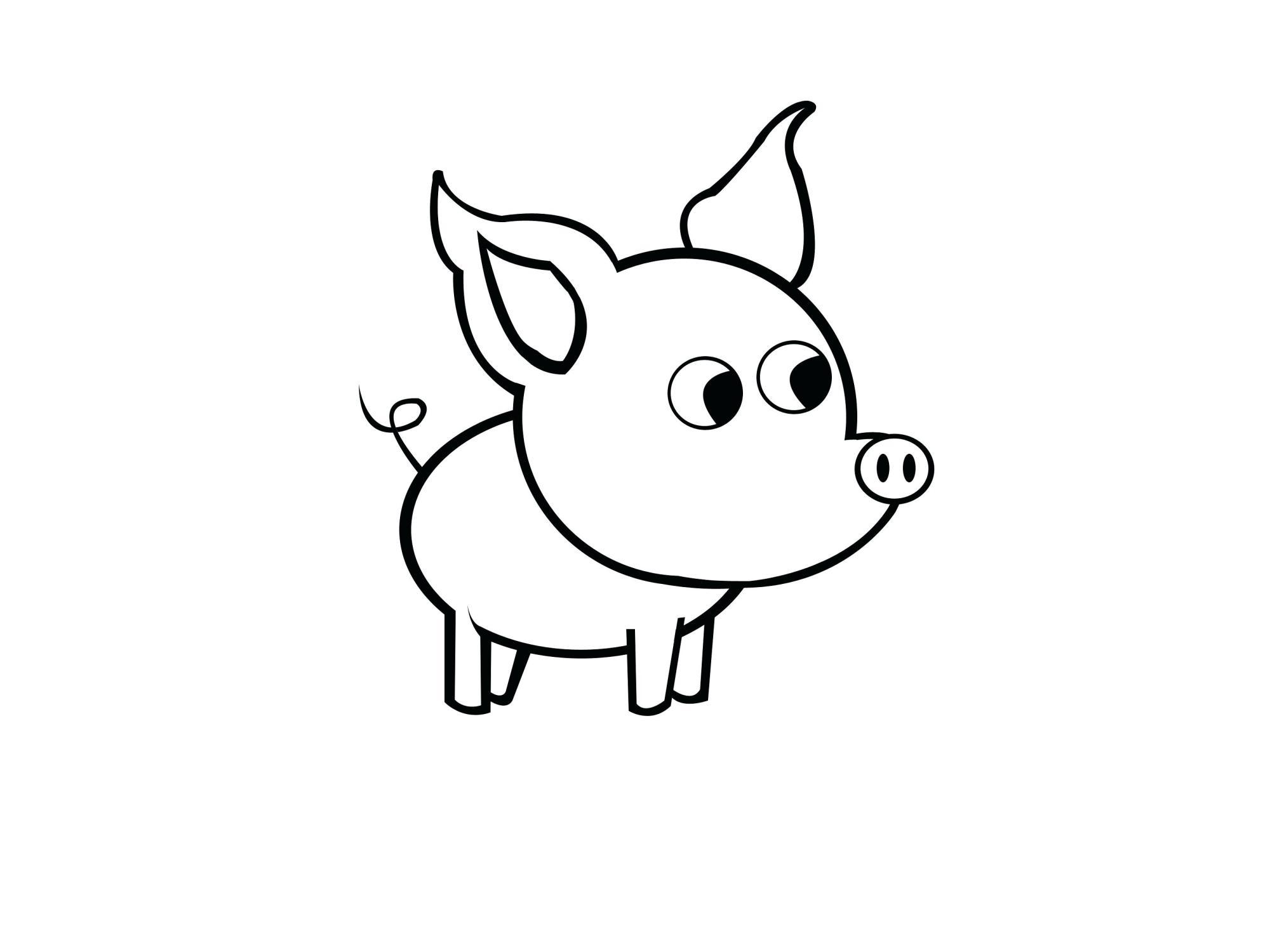 hight resolution of 3200x2400 pig worksheet pig size sorting worksheet download fetal pig pig heart drawing