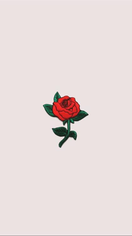 rose drawing tumblr at