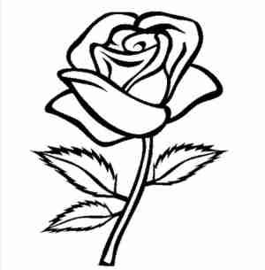 rose drawing flower simple drawings outline paintingvalley