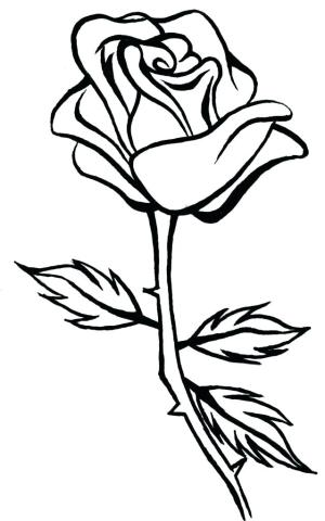 rose drawing clipart roses line drawings outline simple clip flower clipartmag 3d paintingvalley