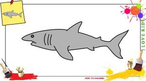shark easy drawing draw step drawings paintingvalley beginners