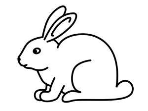 drawing bunny simple rabbit drawings profile paintingvalley