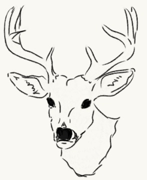deer head drawing simple easy drawings paintingvalley