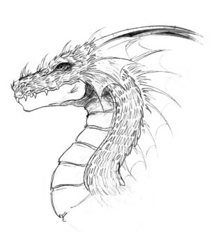 dragon head drawing cool simple drawings dragons chinese face pencil line deviantart realistic really easy sketch phoenix coloring getdrawings paintingvalley