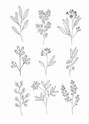 simple line flower drawing minimalist drawings paintingvalley