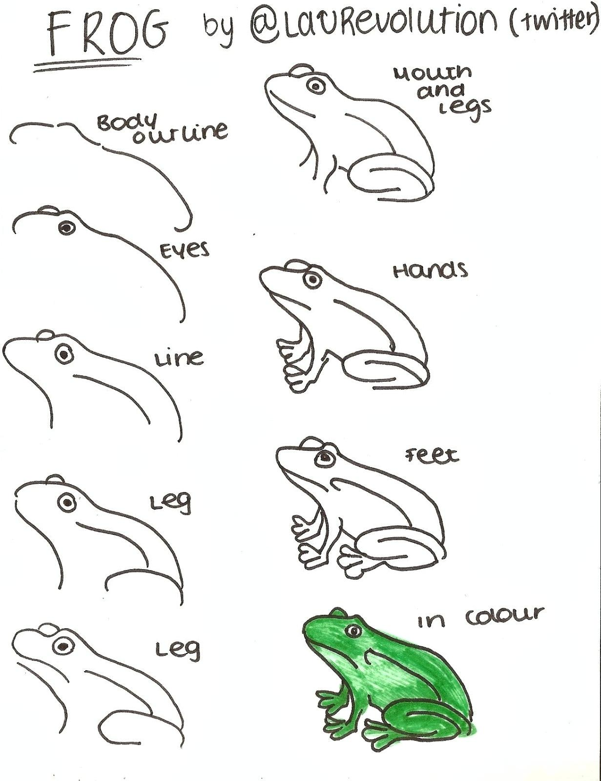 Simple Frog Drawing At Paintingvalley