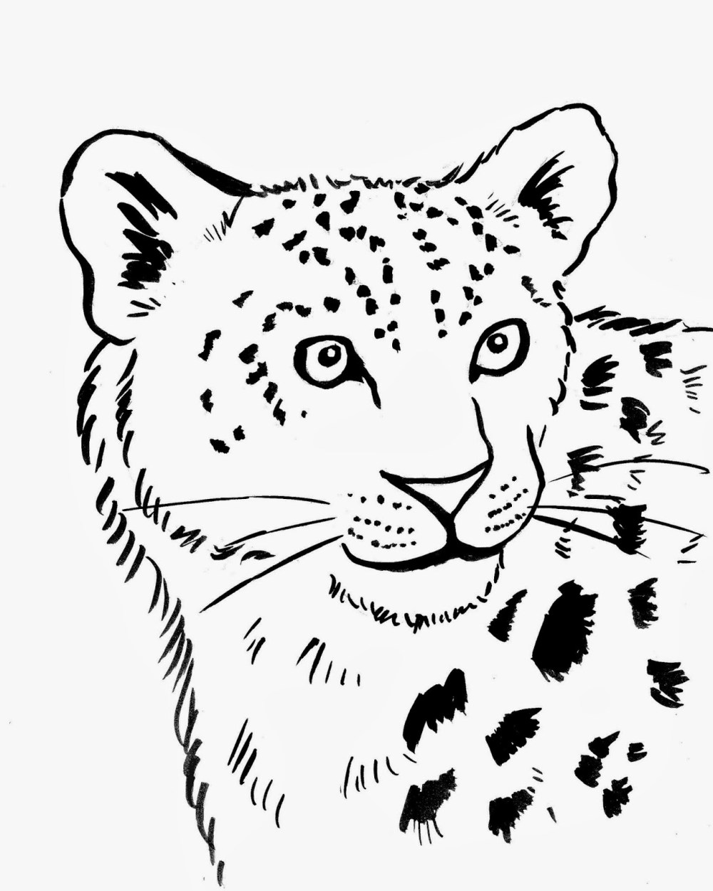medium resolution of simple leopard drawing