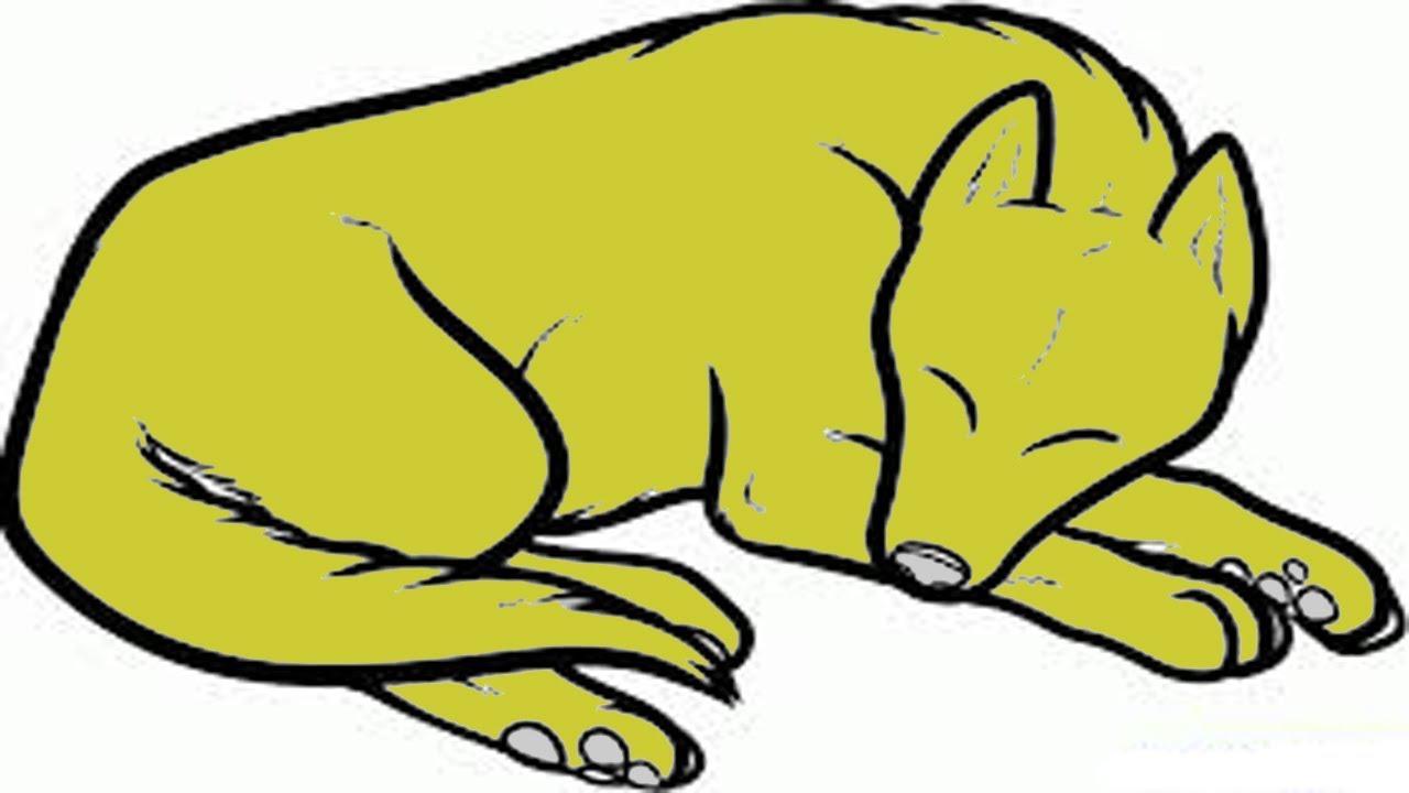 hight resolution of sleeping dog drawing